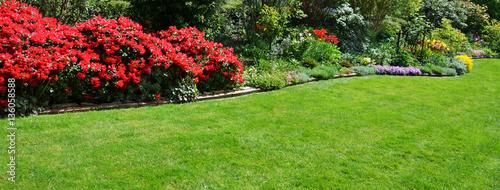 Fotobehang Azalea beautiful garden with azalea