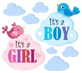 Is it a girl or boy theme 6