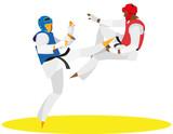 Taekwondo fighter kicks an opponent