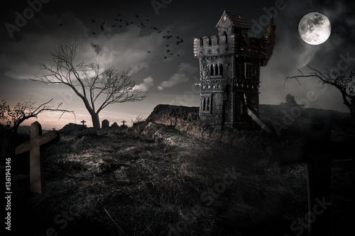 Chateau hanté médiéval vieille tour Poster
