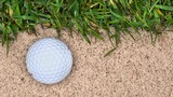 A golf ball lands in a sand trap near the edge of the green, giving the golfer a tricky shot to make..