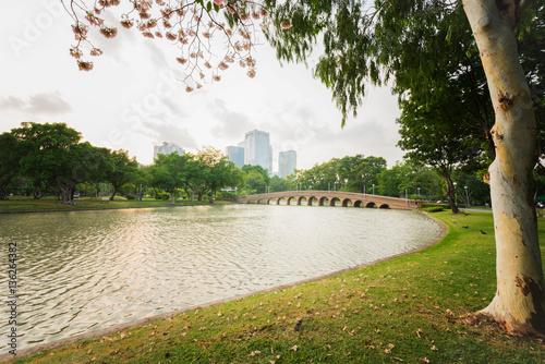 Nature park and urban landscape