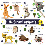 Nocturnal Animals cartoon on white background with animal name. Set 1.