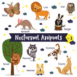 Nocturnal Animals cartoon on white background with animal name. Set 2.