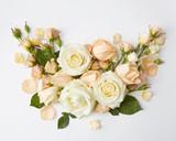 Fototapety Roses on white background