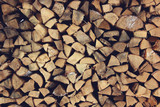ends of logs,  wooden background.