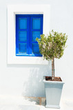 Olive tree and blue window - 136330345