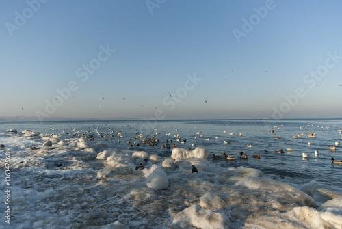 Zima na plaży w Brzeźnie