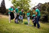 Team of volunteers picking up litter