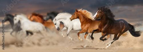 Horse herd run gallop in desert dust against sunset storm sky © callipso88