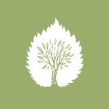 лист и дерево