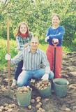 Happy family harvesting potatoes