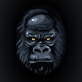 drawing realistic black face gorilla, yellow eyes