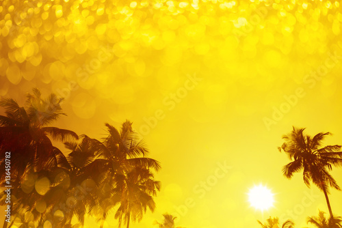 Palm trees silhouettes on...