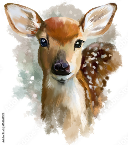 Fawn watercolor painting - 136463912
