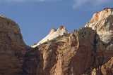 Zion mountains and cliffs with trees growing out of rocks
