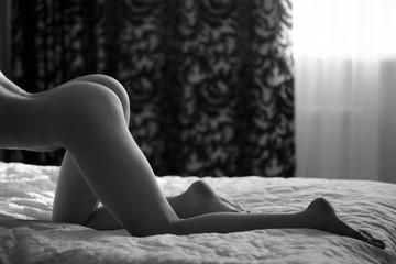 Beautiful nude silhouette of girl in shadows near the window.