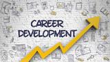 Career Development Drawn on White Brick Wall.