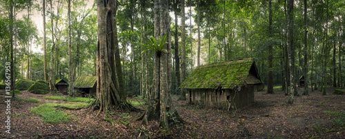 green hut in forest - 136567958
