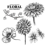Set of flowers sketches isolated on white background. Hand-drawn poppy, lilies of the valley, chrysanthemum sketches. Retro hand-drawn floral vector illustration.