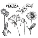 Fototapety Set of flowers sketches isolated on white background. Hand-drawn Sakura, peonies, chamomile, orchid, sketches. Retro hand-drawn floral vector illustration.