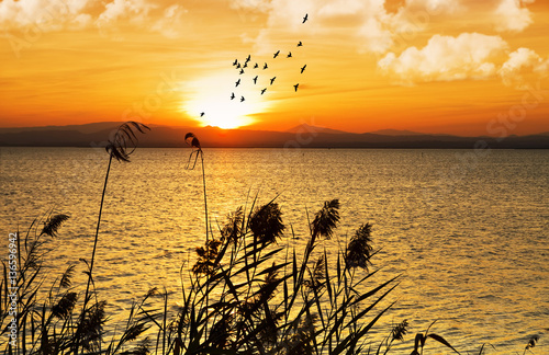 Spoed canvasdoek 2cm dik Oranje amanecer sobre el lago natural