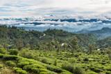 Landschaft in den Bergen von Sri Lanka