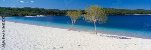Fraser Island's Lake McKenzie - 136632737
