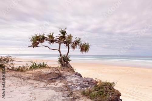 Sunrise of 75 mile beach on Fraser Island Poster