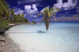 Atoll de l'archipel des Tuamotu - 136641766