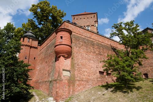 Wawel Castle Wall - Krakow - Poland