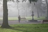 anciano parque con niebla 9298-f17