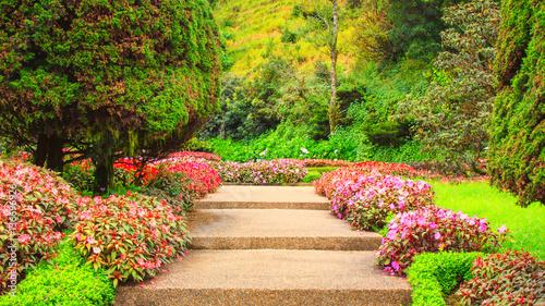 Poster Stairs in a flower garden flower garden