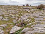 Stony karst landscape of the Burren National Park in County Clare, Ireland