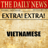 vietnamese, article text in newspaper