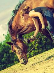Jockey woman taking care of horse
