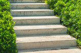 Stairs with selective focus between green bush