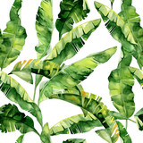 Seamless watercolor illustration of tropical leaves, dense jungle. Pattern with tropic summertime motif may be used as background texture, wrapping paper, textile,wallpaper design. Banana palm leaves - 136767330