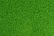 Green grass. natural background texture. high resolution. 3d rendering