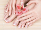female feet at spa salon on pedicure and manicure procedure