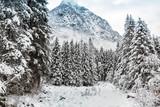 Valmasino (IT) - Paesaggio invernale in zona Bagni del Masino