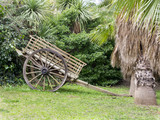 Old wooden transport cart with background of trees and grass