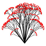 Red Berries - vector illustration