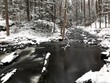 Wintry forest stream