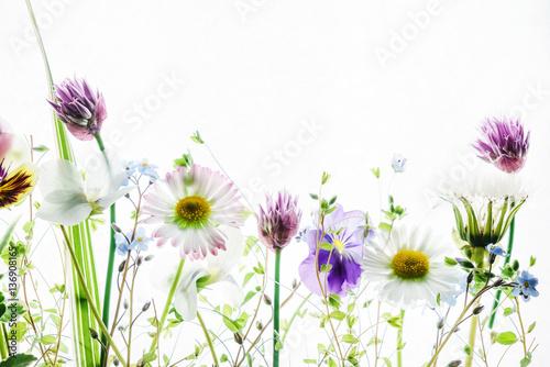 spring flowers - 136908165