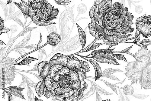 Garden flowers peonies seamless pattern. - 136910577