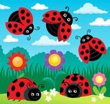 Stylized ladybugs theme image 4