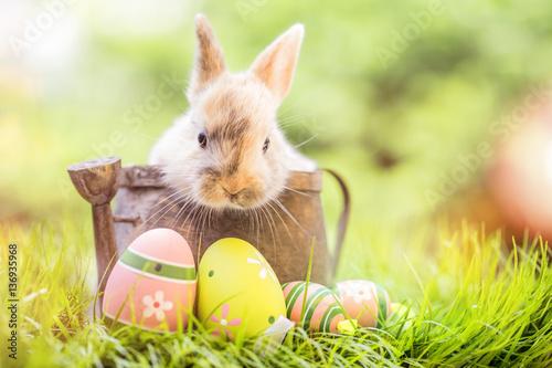 Leinwanddruck Bild Osterkarte