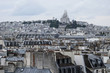 ROOFS OF PARIS, FRANCE