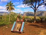 Famous valley de vinales in Cuba.